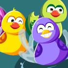 Ducky Race
